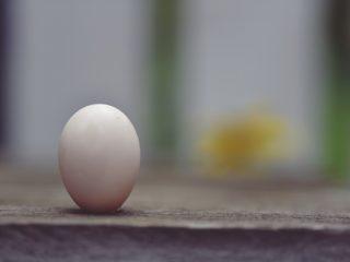 Ideální život - cokoliv je splnitelné